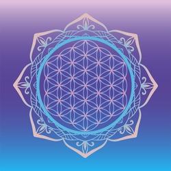 Yoga studio logo, Flower of Life framed with round mandala, sacred geometry symbols and elements for alchemy, spirituality, religion, philosophy, astrology logo.