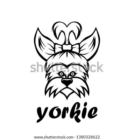 Yorkie dog line art vector