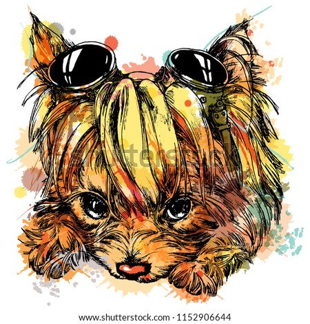 Yorkie Yorkshire Terrier Cute Puppy Dog Steampunk Goggles