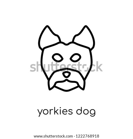 YORKIES dog icon. Trendy modern flat linear vector YORKIES dog icon on white background from thin line dogs collection, editable outline stroke vector illustration