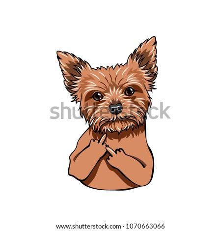 Yorkshire Terrier dog. Middle finger gesture. Dog portrait. Vector illustration