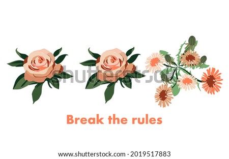 You can break the rules! Dandelion among roses. Unusual pink dandelion color. Lettering for printing on clothes