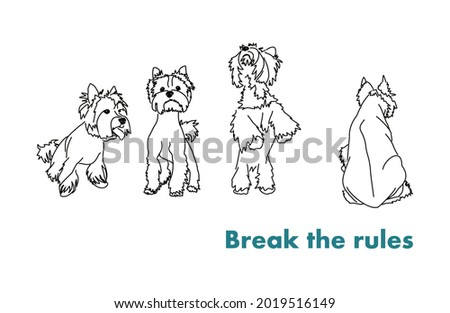 You can break the rules! Unusual dog posture. Lettering for printing on clothes