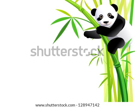 young panda hang on green bamboo forest