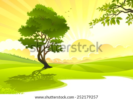 young tree in sunrise