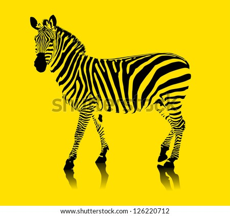 zebra black and white on a yellow background (vector illustration); - stock vector
