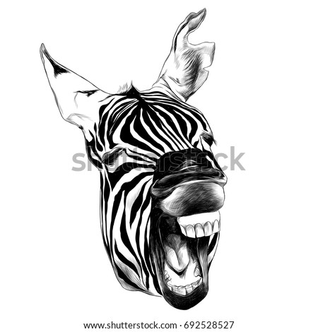 zebra head contorts face with