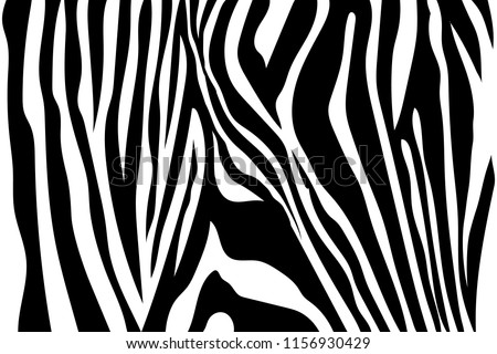 zebra stripes seamless pattern