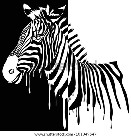 Zebra vector black and white