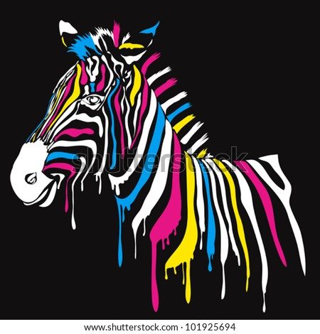 Zebra with colored stripes with black background. Abstract safari animal design with smudges - stock vector