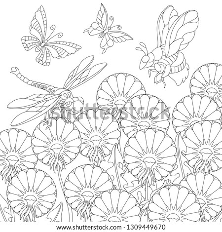 Zentangle coloring page. Colouring picture with butterfly, dragonfly, honey bee and dandelion flowers. Freehand sketch drawing for adult coloring book.
