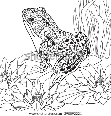 zentangle stylized cartoon frog