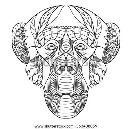 Zentangle stylized chimpanzee head, vector, illustration, freehand pencil, pattern. Monkey doodle. Zen art. Black and white illustration on white background.