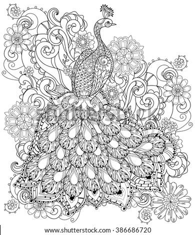 zentangle stylized peacock hand ...