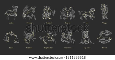 Zodiac constellations on background of hand drawn astrological symbols in engraving style. Vector retro graphic illustrations of horoscope signs.