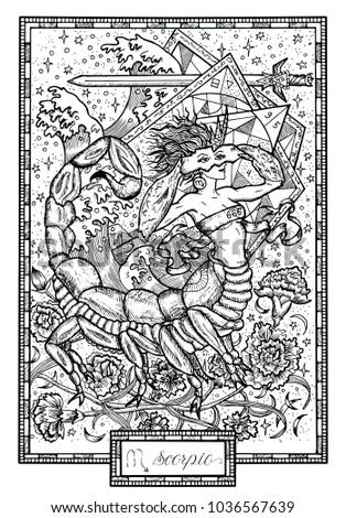zodiac sign scorpio or scorpion