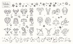 Zodiac signs. Vector Hand Drawn. Collection zodiacal animals illustration. Constellations. Aries, Taurus, Leo, Gemini, Virgo, Scorpio, Libra, Aquarius, Sagittarius, Pisces, Capricorn, Cancer.