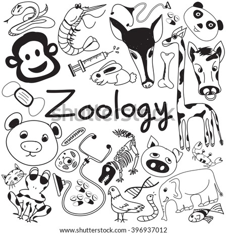 Zoology download writing paper