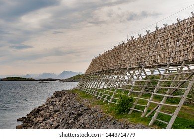 Stockfish, or dried cod, is a natural process created by hanging fish to dry on large racks.  Norwegian stockfish from the Lofoten islands is known for its exceptional quality and taste.