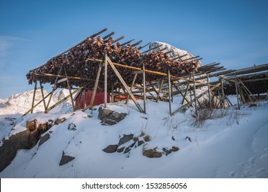 Stockfish is unsalted fish, especially cod, dried by cold air and wind on wooden racks on the foreshore. The method is cheap and effective in suitable climates; the work can be done by the fisherman.