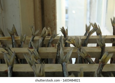 Stockfish is unsalted fish, especially cod, dried by cold air and wind on wooden racks