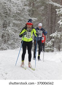 STOCKHOLM - JAN 24, 2016: Old man with big gray beard cross country skiing in the beautiful pine forest at the Stockholm Ski Marathon event January 24, 2016 in Stockholm, Sweden