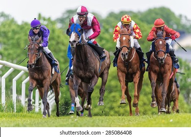 STOCKHOLM - JUNE 6: Group of jockeys and horses in fast pace during the race at the Nationaldags Galoppen at Gardet. June 6, 2015 in Stockholm, Sweden.