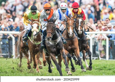 STOCKHOLM - JUNE 6: Jockeys into last curve at the Nationaldags Galoppen at Gardet with the crowd behind. June 6, 2014 in Stockholm, Sweden.
