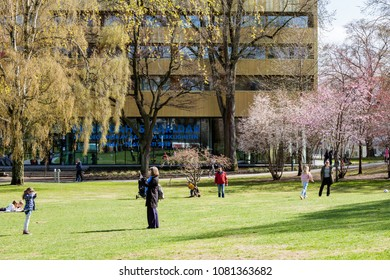 Stockholm May 1:st 2018 - People playing at the lawn of Vasaparken. Sven-Harrys famous museum in the background