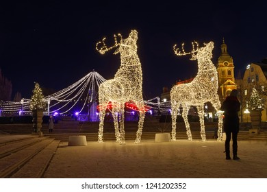 STOCKHOLM - NOV 25, 2018: Gigantic reindeers christmas decoration made of led light in Kungstrandgarden. Stockholm, Sweden, November 25 2018