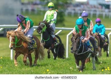 STOCKHOLM, SWEDEN - JUN 6, 2017: Ponys racing at full speed at Gardet. National day 6th of june.