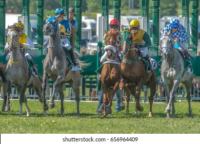 STOCKHOLM, SWEDEN - JUN 6, 2017: Start sequence with fast horses and jockeys at Nationaldagsgaloppen at Gardet.