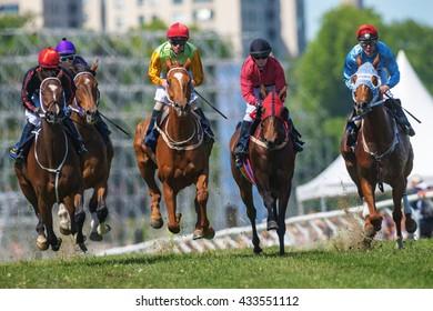 STOCKHOLM, SWEDEN - JUNE 6, 2016: Racehorses with jockeys at the Nationaldags Galoppen at Gardet.
