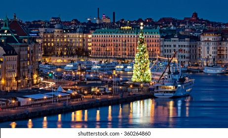 Stockholm, Sweden - Nov 30, 2015 : One of the world's tallest Christmas tree is ready for the X-mas 2015 in Sweden. Standing on the Old Town in the heart of Stockholm with the height of around 45 m.