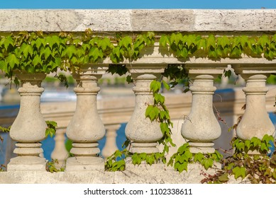 Stone arch and colums with ivy