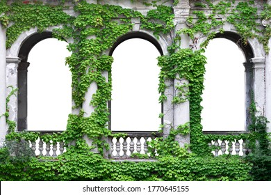 Stone arch covered with green ivy. Arch in greenery on a white background.  - Shutterstock ID 1770645155