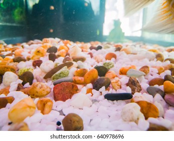 stone background on fish tank, Underwater rocks, clear water