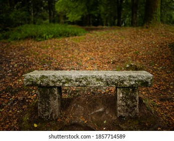 Stone bench in the forest of Huelgoat (Brittany, France) on a cloudy day in summer