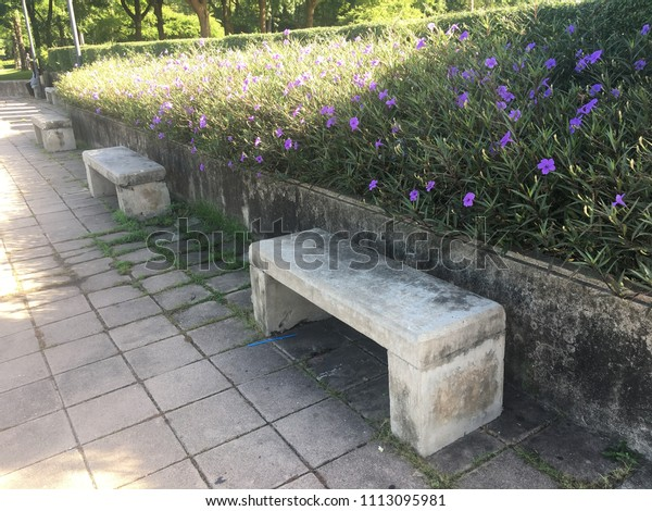 Pleasing Stone Bench Seat Chair Park Stock Photo Edit Now 1113095981 Bralicious Painted Fabric Chair Ideas Braliciousco