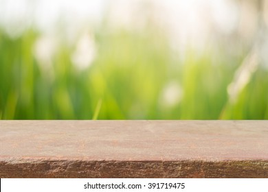 Stone board empty table in front of blurred background. Perspective brown rock over blur trees in forest - can be used for display or montage your products. spring season. vintage filtered image.