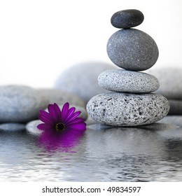 stone cairn and purple flower