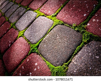 Stone Colorful Tiles illuminated by sunlight