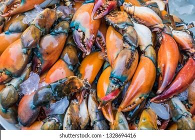 Stone Crab Tray