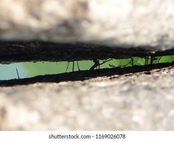 Stone crevice with green background shining through.