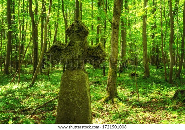 Stone cross in the fresh green forest in the Hainich national Park