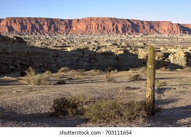 Stone desert in Ischigualasto, Argentina, UNESCO world heritage site.