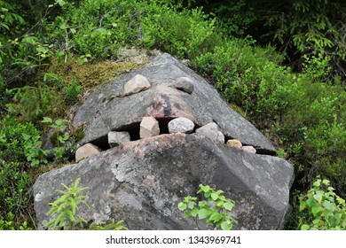 A stone face in a forest.