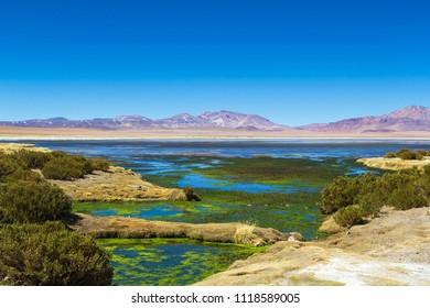 Stone formation  Salar De Tara, Los Flamencos National Reserve, Atacama Desert, Chile, South America