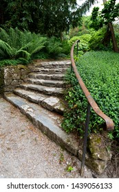 Stone garden steps curving upwards to a second garden level