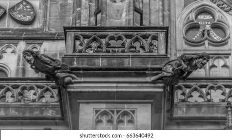 Stone gargoyle water drains. St. Vitus Cathedral in Prague.